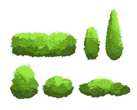 Set di illustrazione vettoriale di cespugli verdi da giardino e alberi decorativi di diverse forme. Raccolta di arbusti e cespugli nello stile del fumetto isolato su priorità bassa bianca.