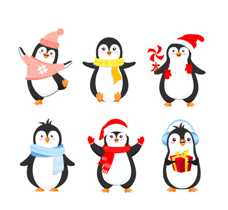 Vector illustration set of funny Christmas penguins in warm clothes. Cute penguins collection for winter holidays greeting cards design in cartoon flat style isolated on white background Standard-Bild - 126915481