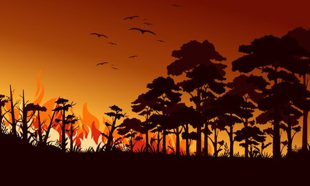 Fire in forest flat vector illustration. Birds flying over fire flame. Wildfire landscape, wildland. Natural ecology disaster. Burning trees and blaze wood at night. Flaming woodland Фото со стока - 129976324