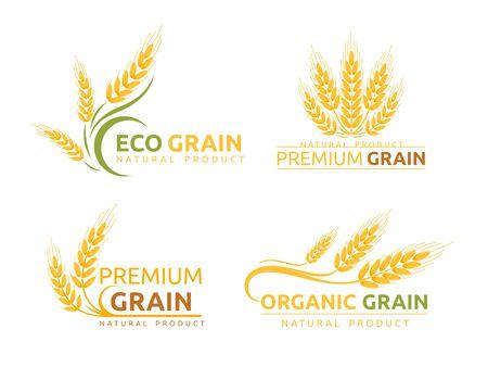 Set di disegni del logotipo piatto vettoriale a grana premium. Cereali biologici, pubblicità di prodotti naturali. Illustrazioni di cartoni animati di spighe di grano maturo con tipografia. Eco farm, pacchetto di concetti di logo del negozio di panetteria.