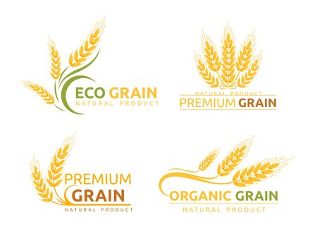 Premium grain flat vector logotype designs set. Organic cereal crops, natural product advertising. Ripe wheat ears cartoon illustrations with typography. Eco farm, bakery shop logo concepts pack. Illustration