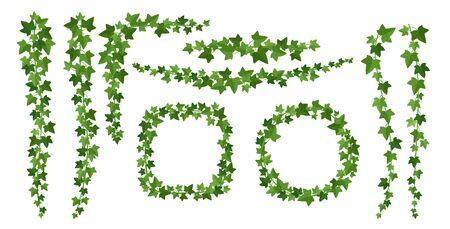 Zestaw zielonych ramek bluszczu płaskie ilustracje wektorowe