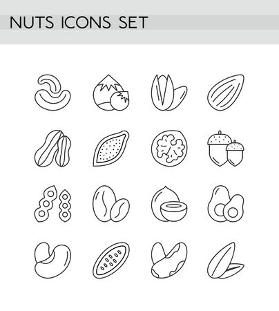 Nuts icons outline vector illustration collection isolated on white background. Different types of nuts, shapes, cross-sections set walnut, peanut, acorn, Brasil, cashew, hazelnut, almond, pistachio