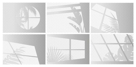 Window lights vector illustration set. Sunlight or shadow transparent overlay effect from window frames and tropical plant branch, palm tree leaves on room wall, ceiling or floor. Realistic background