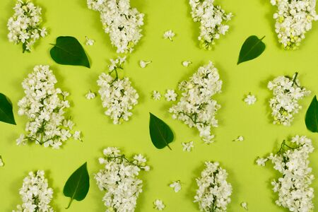 Dry flowers of white lilac with green leaves on a wooden background. Old, dried flowers of lilac.