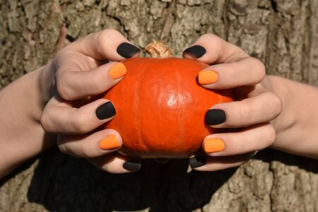 Women hands holding a pumpkin on a background of tree bark. Autumn composition. Side view.