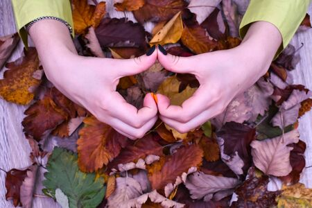 Female hand with a beautiful autumn manicure in the form of a heart on a background of colorful autumn leaves. View from above.
