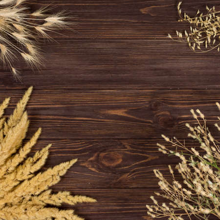 Spikelets of different plants on a wooden background. Place for an inscription. View from above.