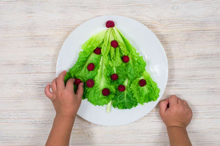 The Christmas tree is lined with green lettuce leaves, decorated with red raspberries on a white plate. The child is about to eat a Christmas tree salad. Food for the New Year. Table decoration.