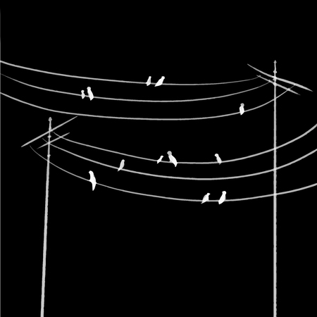 birds on the wires one line draw vector illustration