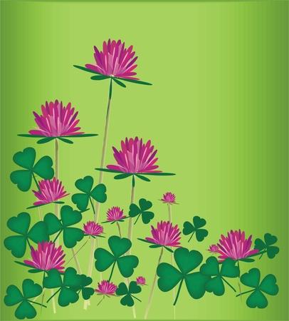 seamless clover: vector wild flowers  Illustration