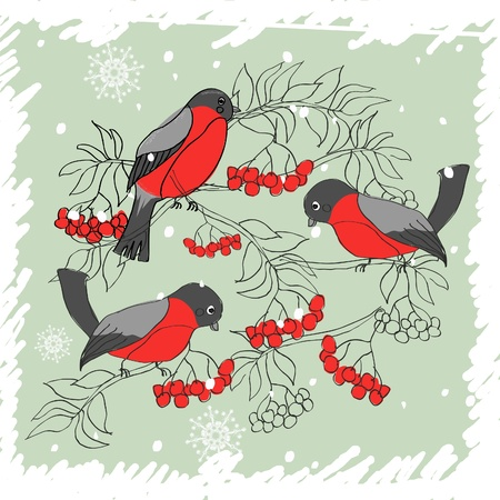 bullfinch: winter pattern with bullfinches and rowan