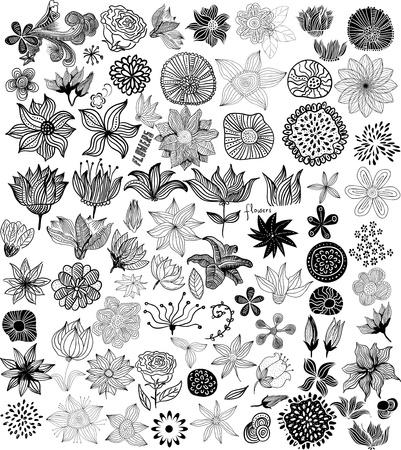 brie: Set van zwarte bloemen