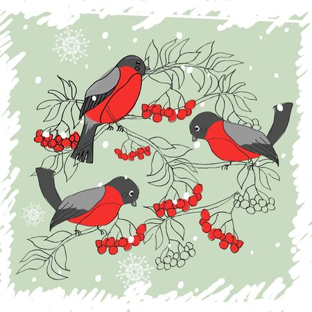 winter pattern with bullfinches and rowan Stock Vector - 17604651