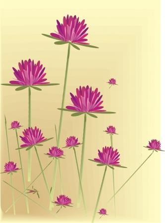vector wild flowers Stock Vector - 17773532