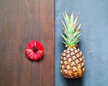Tropical background with pineapple and gerbera flower. Copy space. Closeup, top view. Imagens