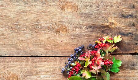Autumn decor. Viburnum and blackberry berries on wooden background. Close-up, copy space Banco de Imagens