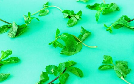 Fresh mint background. Trendy colour of the year 2020. Close-up, copy space Banco de Imagens