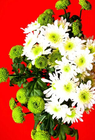 Floral style.Bouquet of flowers from white lily and green chrysanthemum. Festive decor. Close-up