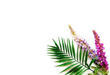 Tropical background with palm leaves and colorful flowers. Summer Equinox Day or Solstice. Creative copy space, close-up