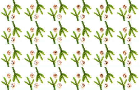 Christmas or New Year pattern of pine cones and fir branches on white background. Design for wrapping paper for gifts.