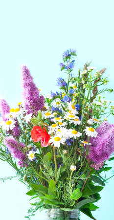 Bouquet of wildflowers on green background. Wildlife concept or hello summer. Close-up