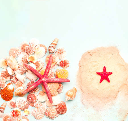 Red starfish against the background of seashells. Summer time or hello summer. Creative copy space, close-up