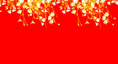 White wildflowers on red background. Creative copy space for positive mood. Фото со стока