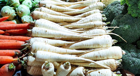 White carrots and various of cabbage. Farm shop. Harvest festival concept or food background. Фото со стока