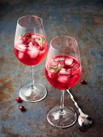 Cranberry rosemary spritzer drink on a dark background. Фото со стока