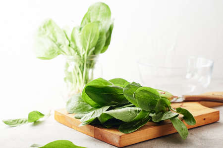 Fresh green spinach leaves on a kitchen board. Фото со стока