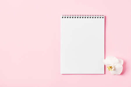 Top view of blank sheet of notebook and white orchid flower (phalaenopsis), pink background. Copy space.