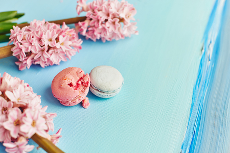 Macarons with pink hyacinth on blue background