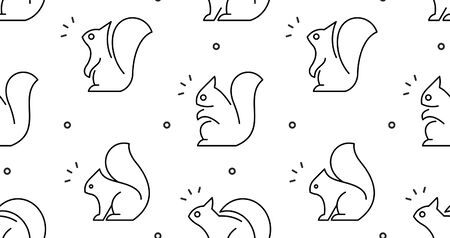 Seamless pattern with Squirrels. isolated on white background