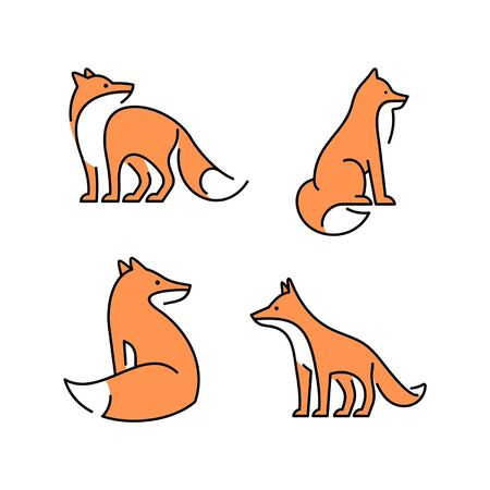 Linear Set of colored Foxs icons. Icon design. Template elements