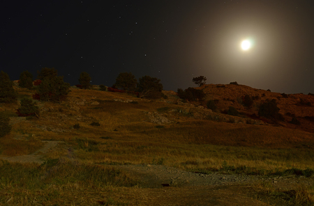 Night landscape in the mountains against the backdrop of a starry sky in summer