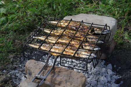 Mackerel fish lying on the grill and cooked on an open fire. Close-up Standard-Bild