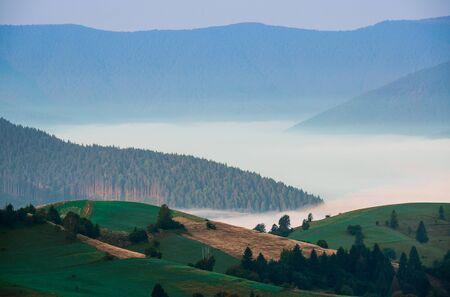 Morning fog in the mountains of the Carpathians on the background of mountain peaks covered with trees Фото со стока