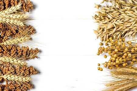 Dried ears of wheat, oats and other grains lie on a white background wood with copy space top view Фото со стока