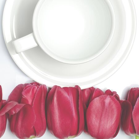 red tulips lay on a white background near the white coffee cup, which stands on a white saucer. closeup Фото со стока