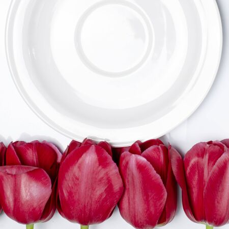 White saucer stands on a white background next to multi-colored tulips. Closeup