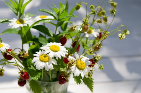 Medicinal herbs: Branches of red ripe strawberries, white daisies and mint leaves stand in a glass of water on a wooden stump against the background of green grass Stock Photo