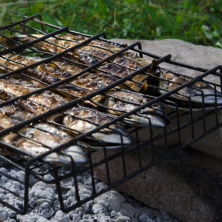 Mackerel fish lying on the grill and cooked on an open fire. Close-up Фото со стока