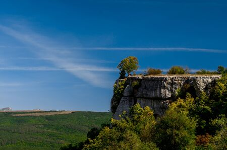 A tree grows on the edge of a cliff above the autumn forest. This rock is part of mountain plateau Burunchak near cavetown Chufut-Kale and Bakhchisaray city on the Crimean Peninsula