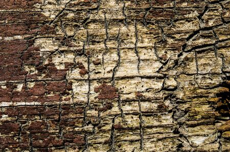 An old brown wood background with cracks. Close-up
