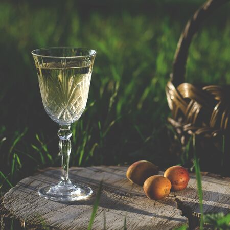 A glass of white wine stands on a wooden stump against the backdrop of green grass in the summer garden Фото со стока
