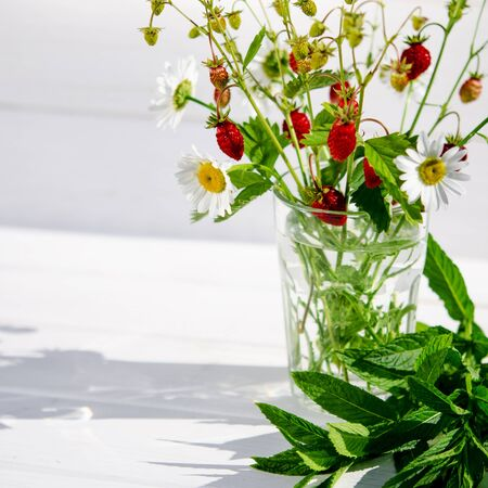 Medicinal herbs: Branches of red ripe strawberries, white daisies and mint leaves stand in a glass of water on a wooden stump against the background of green grass Фото со стока