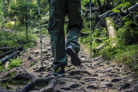The feet of a tourist in sports shoes with walking sticks on a mountain path against the backdrop of a dense old forest. traveler tourist hiker close-up shoes boots and hiking sticks poles. man tourist hikers walking in forest steps trail on a log timber with sunshine. travel concept.
