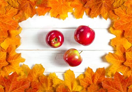 Yellow maple leaves and red juicy apples lie on a white wood background. Close-up Stockfoto - 131466999
