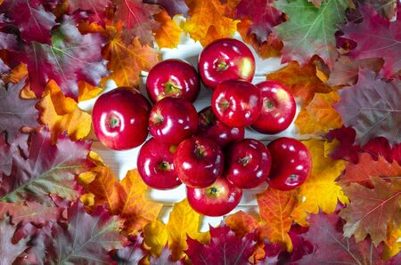 Juicy red apples lie on bright lydhomulti autumn leaves. Close-up Stockfoto
